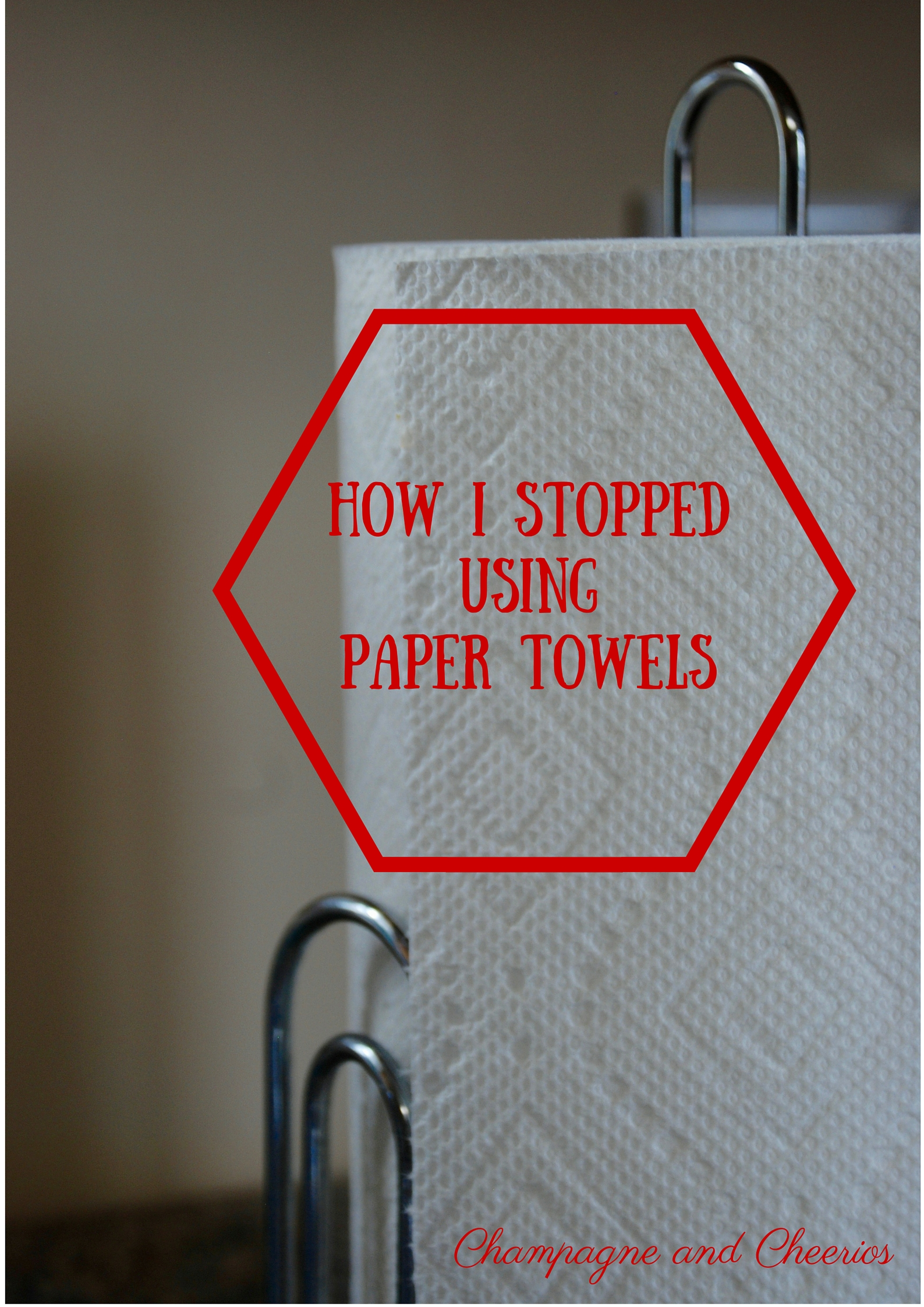 How I Stopped Using Paper Towels- Champagne and Cheerios